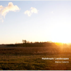 Holotropic Landscapes book